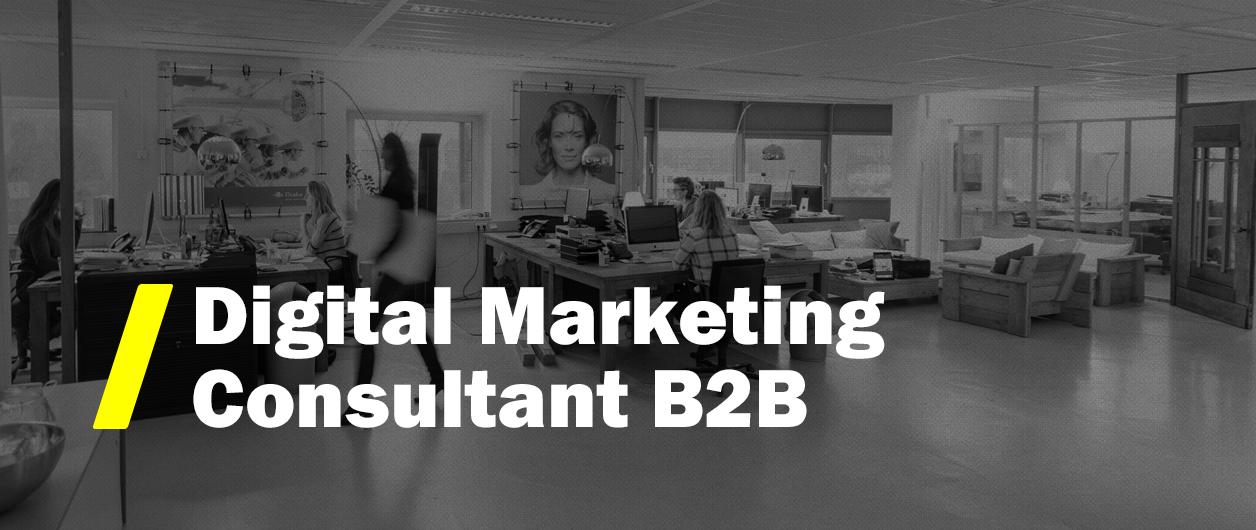 Vacature Digital Marketing Consultant B2B