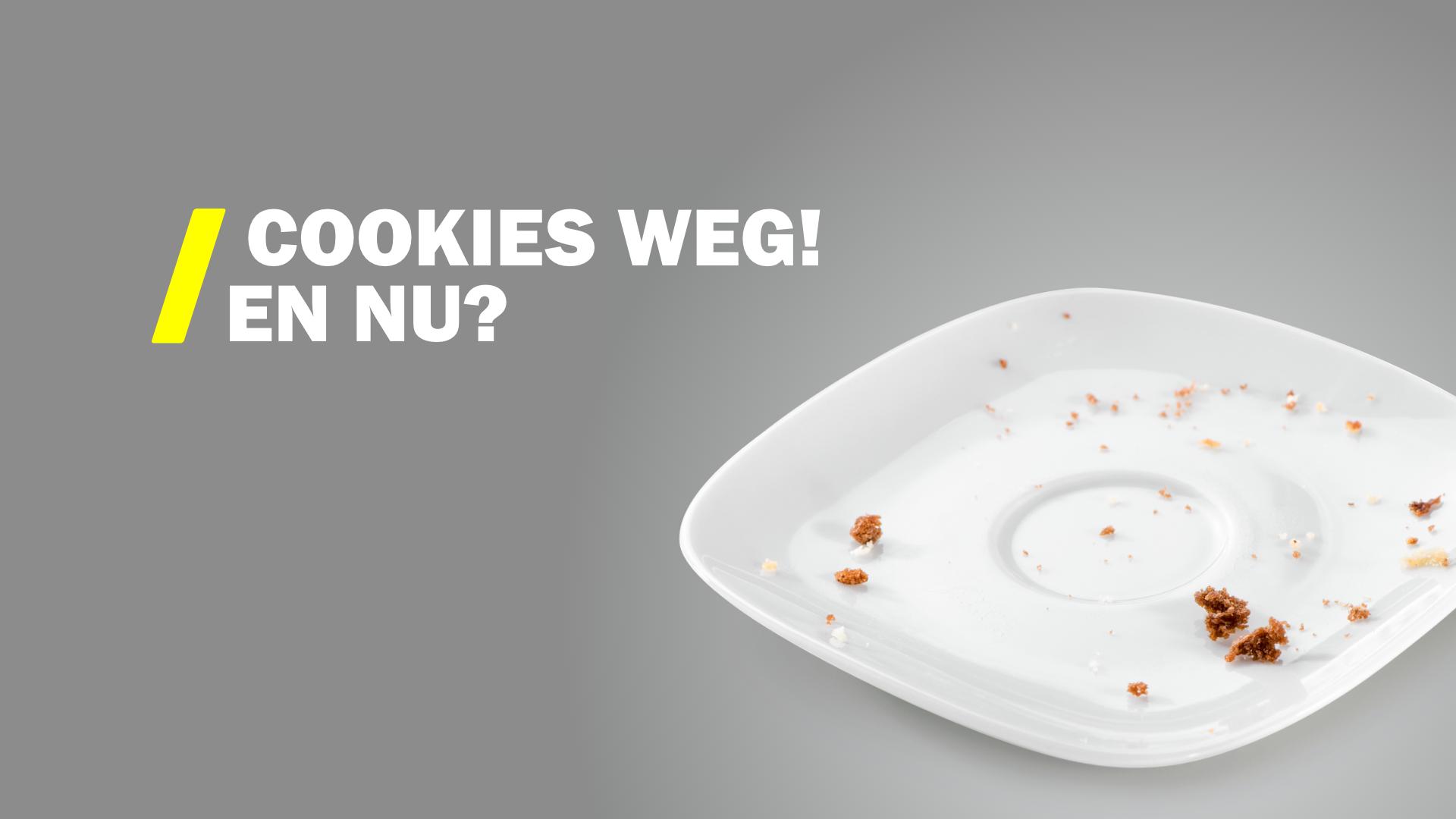 Persoonlijke advertenties binnen een internet zonder cookies
